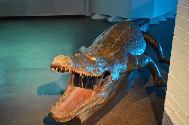 Crocodile Mini-Submarine (Octopussy, 1983)