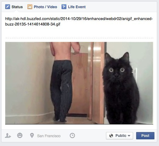 gif on facebook