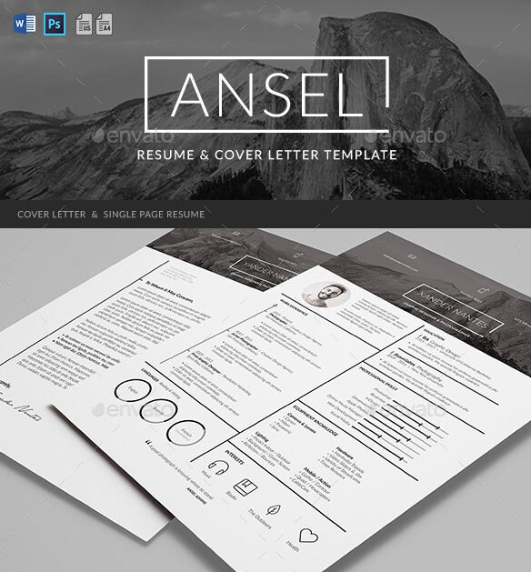 Ansel Infographic Resume