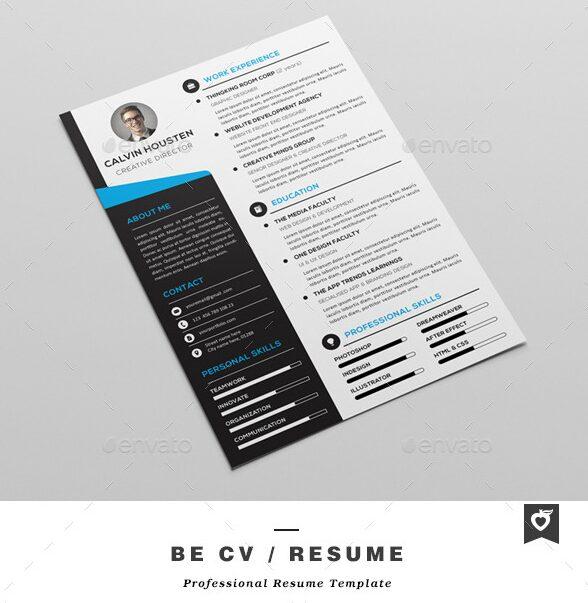 Effective Professional Resume