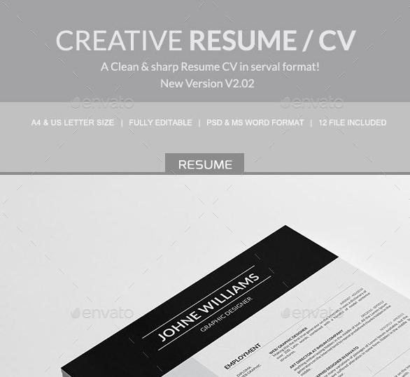 Top 10 Professional Microsoft Word CV Templates Custom Made
