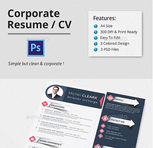 Corporate Infographic Resume CV