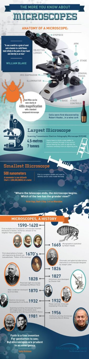 microscopes infographic