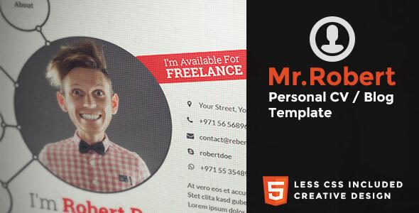 mr robert resume website