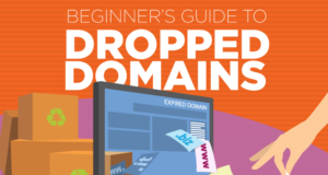 Dropped Domains guide