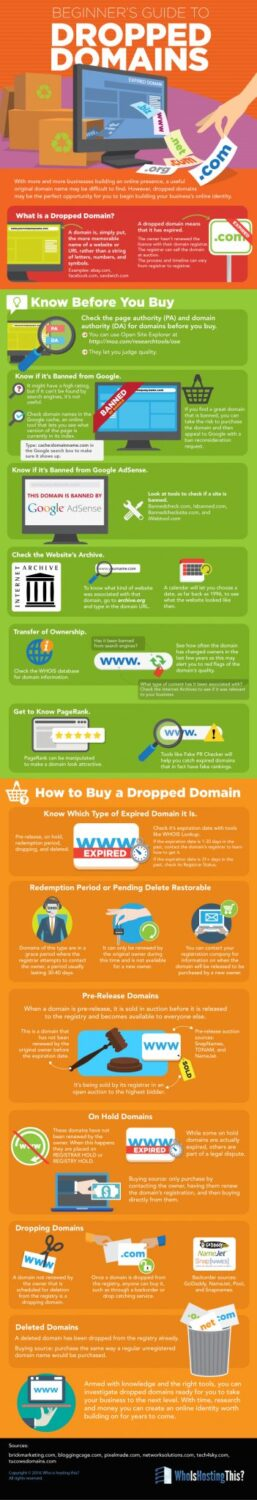 Guide To Dropped Domains