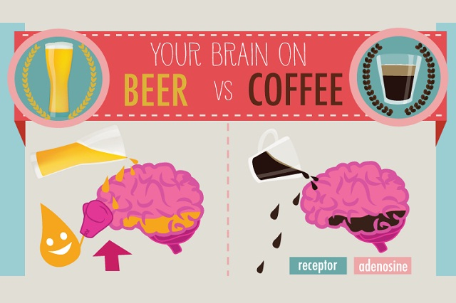 Your-Brain-on-Beer-Vs-Coffee-infographic