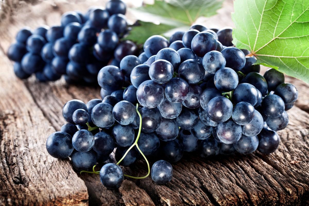 grapes may boost memory