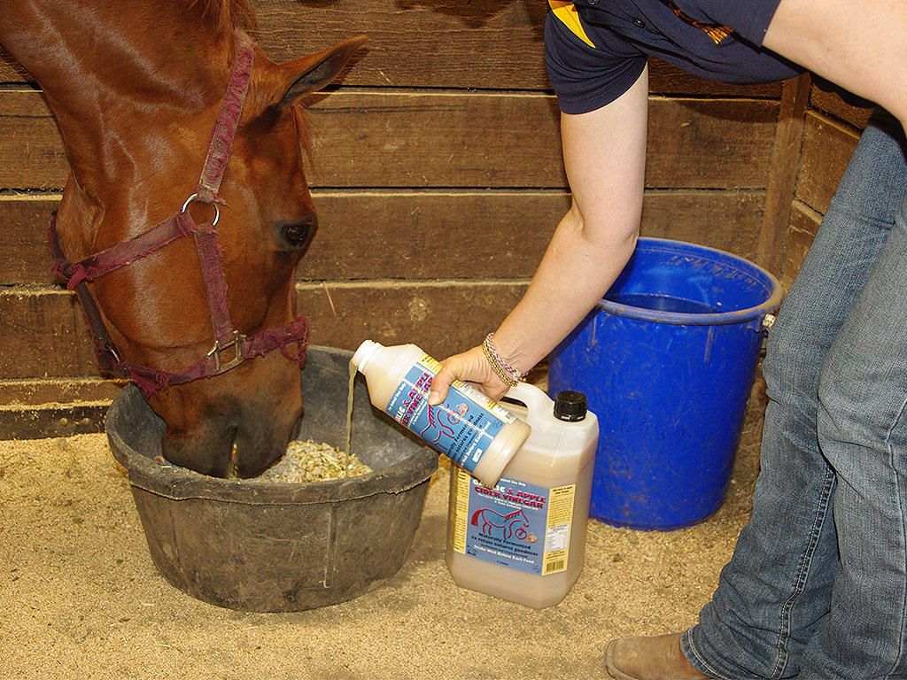 apple cider vinegar benefits for horses