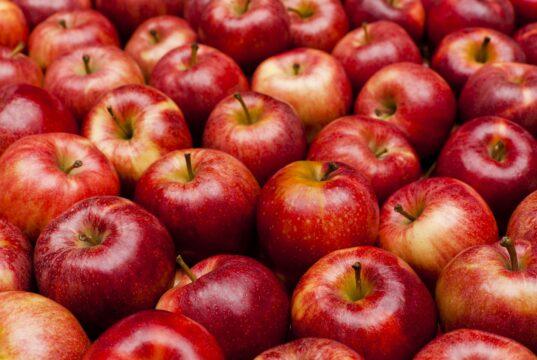 Calories green apple large