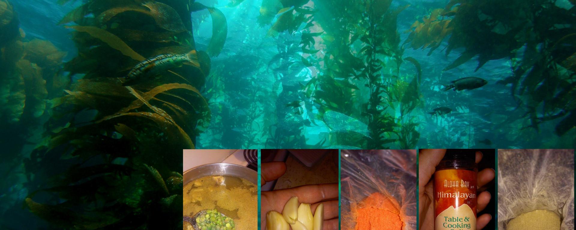 apple cider vinegar and thyroid kelp