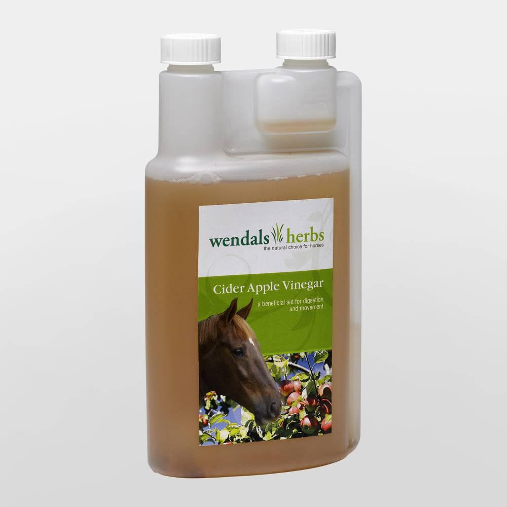 how much apple cider vinegar for horses