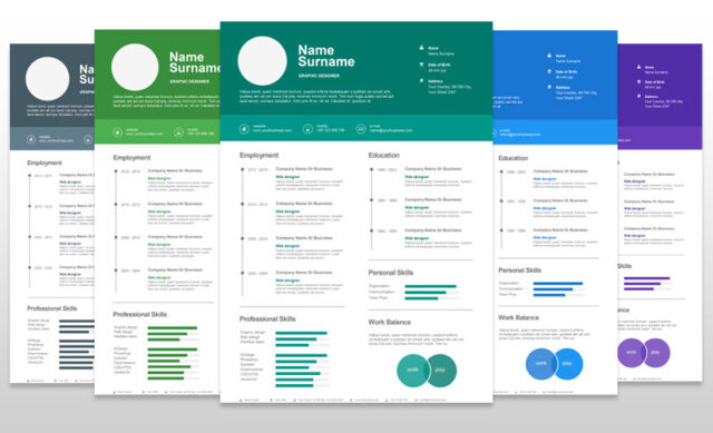 professional infographic resume templates